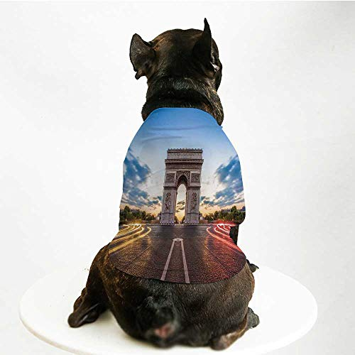 - YOLIYANA European Fashion Pet Suit,Paris Famous Champs Elysees Avenue Historical Monument French Culture Panorama for Cats and Dogs,L