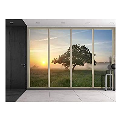 Premium Creation, Pretty Piece, Lone Tree on a Foggy Prairie Field as The Sun Rises Viewed from Sliding Door Creative Wall Mural Peel and Stick Wallpaper