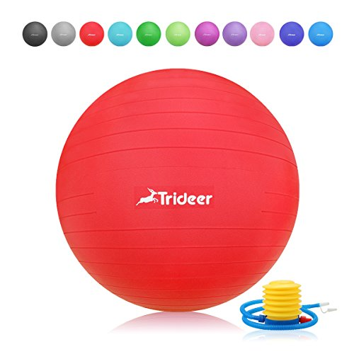 Exercise Ball - Pro Gym Quality 2000lbs Anti-Burst Birthing Ball, Ball Chair, Yoga Balance Ball with Pump, Extra Thick Static Strength Stability Ball (Office and Home) (Red (Matte surface), 65cm)