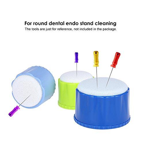 zroven Zahnmedizinischer runder Endo Stand-Reinigungs-Schaum-Datei-Bohrer-Block-Halter mit Schwamm Autoclavable-Zahnarzt-Produkt-zahnmedizinisches Werkzeug-zufällige Farbe