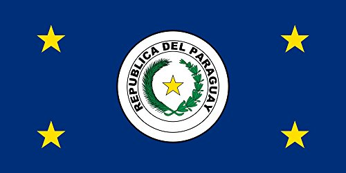 magFlags Large Flag President of Paraguay | Coat of arms of Paraguay Extracted from Image Flag of Paraguay | Landscape Flag | 1.35m² | 14.5sqft | 80x160cm | 30x60inch - 100% Made in Germany