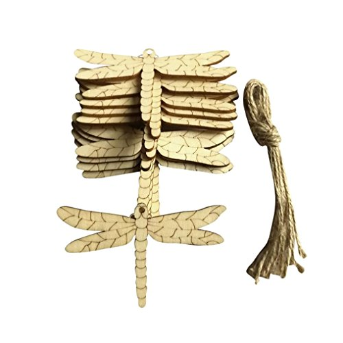 - Transer 10 Pcs Dragonfly Shape Natural Wooden Chip Pendant, DIY Painted Quality Wood Crafts Home Decoration Gifts (Dragonfly)