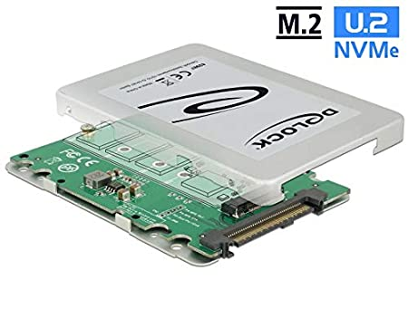 DeLOCK 62987 SSD Enclosure 2.5