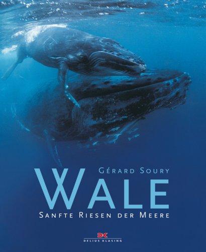 Wale: Sanfte Riesen der Meere