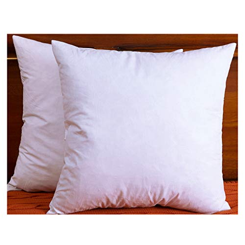Feather Microfiber Throw - DOWNIGHT Two Pillow Inserts, 20 X 20 Inch, Down and Feather Throw Pillow Insert, The Fabric is Cotton, Decorative Throw Pillows Insert. These Products are Only Sold and Fulfilled by Amazon.
