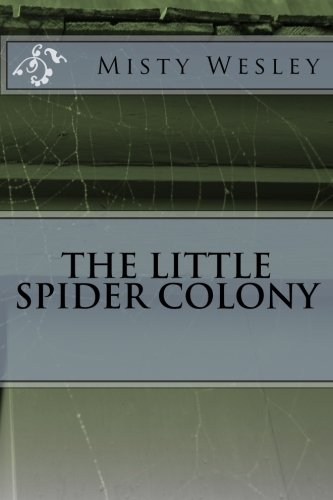 The Little Spider Colony (Ms Spider)