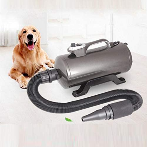 Soplador De Agua para Mascotas,Peluquería para Mascotas Secador De Pelo,Dedicado Mudo Secador De Pelo Perro, para Perros Baño De Gato: Amazon.es: Deportes y aire libre
