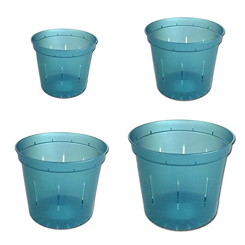 Slotted Clear Orchid Pots Assortment product image