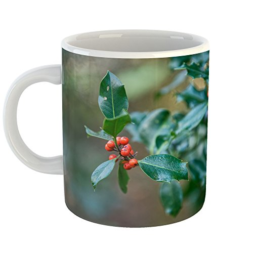 Westlake Art - Berry Holly - 11oz Coffee Cup Mug - Modern Picture Photography Artwork Home Office Birthday Gift - 11 Ounce (D5C1-4818F)