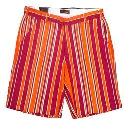 Virginia Shorts - 8