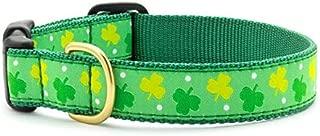 product image for Up Country Shamrock Dog Collar - Medium