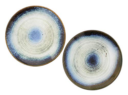 Distinctive Designs Set of 2 Ceramic Plates with Blue Brown Glaze, 9