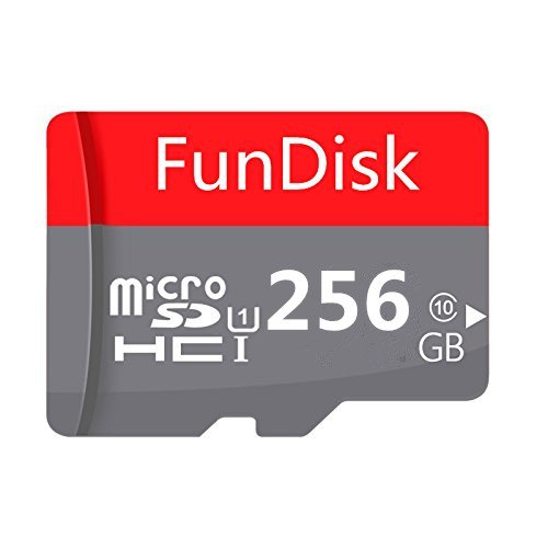 GGenerici 256GB High Speed Class 10 Micro SD Card with Micro SD Adapter (256GB)