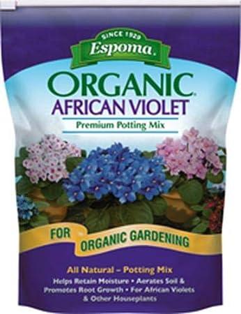 Amazon.com: Mezcla de macetas de violeta africana, 4 cuartos ...