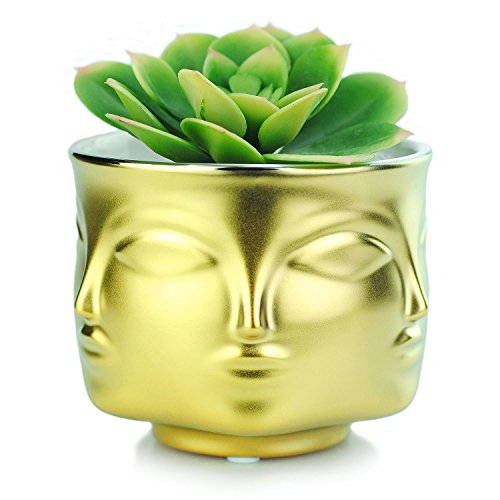 VanEnjoy Modern Decorative Nordic Style Face Statue Planter Flower Pots,Faces on 6 Sides, 4.37 Inches (Gold) (Face Planter)