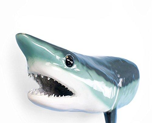 Shark Fiberglass - Giant Taxidermy Mako Shark Head Fiberglass Wall Mount