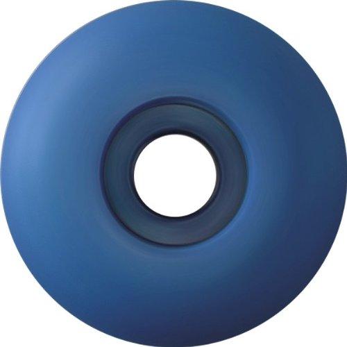 不正知人入浴Essentialsブルー53 mm Wheels (Set of 4 )