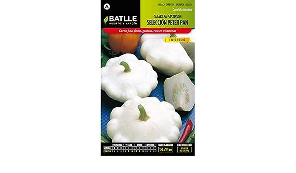 Amazon.com: Batlle Vegetable Seeds - Pumpkin White patisson Peter pan (6g): Home & Kitchen