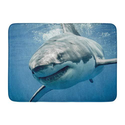 (Emvency Doormats Bath Rugs Outdoor/Indoor Door Mat Blue Threat Great White Shark Smiling Predator Smile Face Sea Teeth Bathroom Decor Rug Bath Mat 16