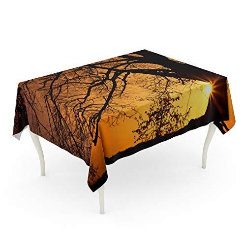 Tarolo Rectangle Tablecloth 60 x 84 Inch Orange Landscape Silhouette of Willow Tree The Sun Behind Sunset Sunrise Cloudscape Gelderland Table Cloth