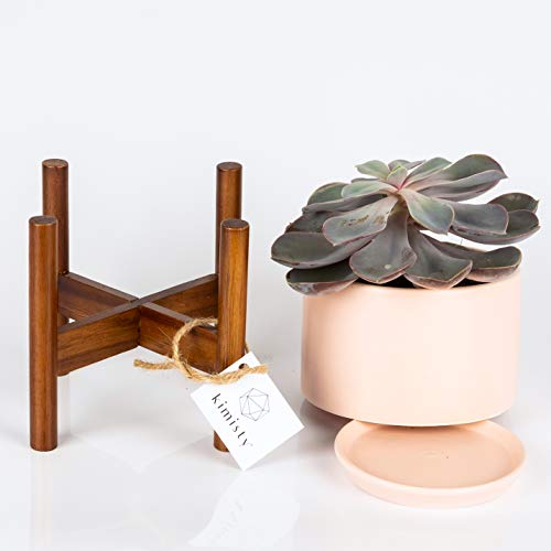 Blush Coffee (Mid Century Modern Ceramic Planter Tabletop | 5 Inch Pot with Wood Stand and Hidden Saucer | Quality Blush Pink Succulent Planters | Shelf and Table Decor as Cactus and Plant Container with Drainage)