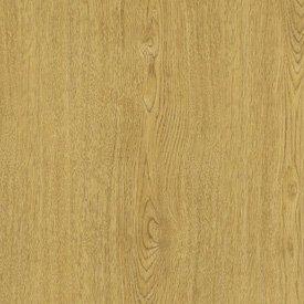 Solar Oak Laminate (Wilsonart Sheet Laminate 5 x 12 - Solar Oak)