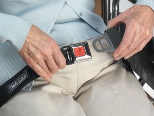 MultiPro Seat Belt w/Buckle Sensor - w/adjustable Loop Attachment, 45''L - 1 Each / Each