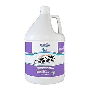 Amazon Com Pet Odor And Stain Remover Eliminator