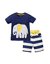 Baby and Little Boys' 2pc Cotton Summer Animal T-shirt Shorts Set Outfit