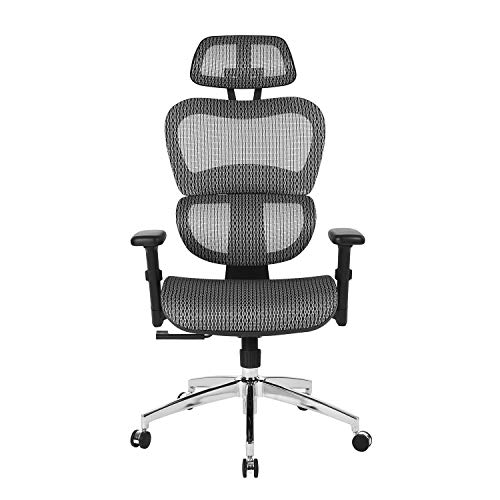 (HOMY CASA Mesh Office Chair Ergonomic Gaming Chair Lumbar Support High Back Support Height Adustable Tiltable Desk Chair with Ajustable Armrest for Home,Office)