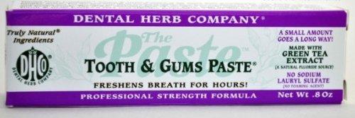 Dental Paste (Dental Herb DHC-TG Tooth & Gums Paste Travel Size)