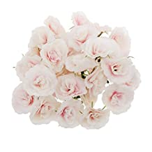 Dovewill 10 Colors Raw Silk Artificial Rose Flower Heads Bulk Wedding Party Bouquet Hats Craft Projects DIY Flower Head Pack of 50 - Pink White