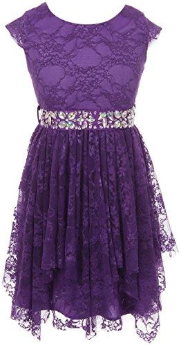 Big Girls' Cap Sleeve Girls Dress Floral Lace Rhinestones Waistband Flower Girl Dress Purple 10 (J20KS95)