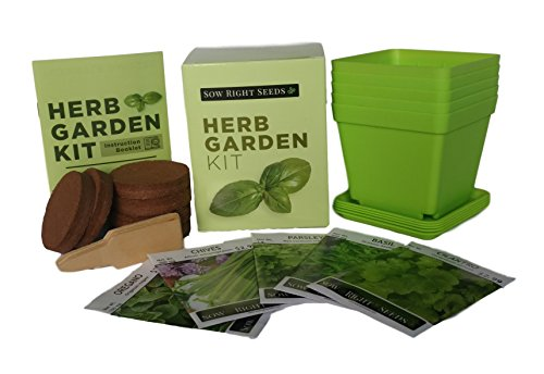 Indoor Herb Garden Starter Kit - Full Size Seed Packets of Basil, Chives, Cilantro, Oregano & Parsley - Everything you Need to Grow Herbs in Your Kitchen - Soil, Reusable Pots, Trays, Plant Markers, & Cilantro Garden Grow Pot