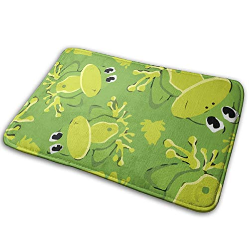 (TERPASTRY Indoor Super Absorbs Water Doormat 15.7