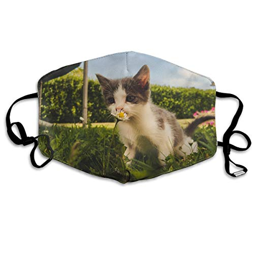 VTWG Cats and Flowers Washable Reusable Safety Mask, Stylish Polyester Adolescent Couple Dust-Proof Adjustable Earrings