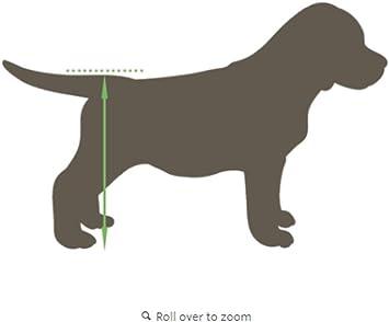 Silla de ruedas para perros - Talla M para altura de 40-51cm ...