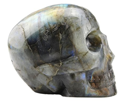 Laufout 2.54LB Natural Labradorite Carved Realistic Crystal Sculpture, Healing Energy Reiki Collectible Figurine Michele Carved Skull
