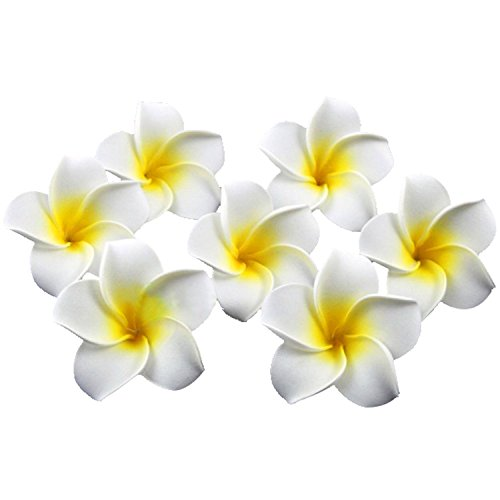 HugeStore 100 Pcs Diameter 2.4 Inch Artificial Frangipani Plumeria Hawaiian Flower Petals For Wedding Decor Decoration White (Flowers Hibiscus White Silk)