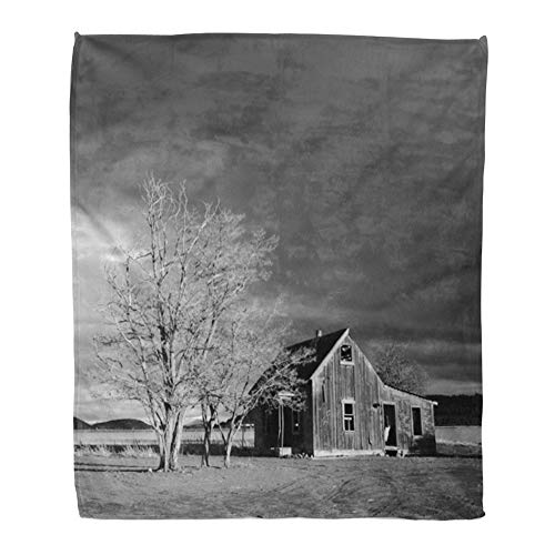 Emvency Throw Blanket Warm Cozy Print Flannel Abandoned Homestead Near Culver in Central Oregon on Stormy Winter Day Comfortable Soft for Bed Sofa and Couch 60x80 Inches