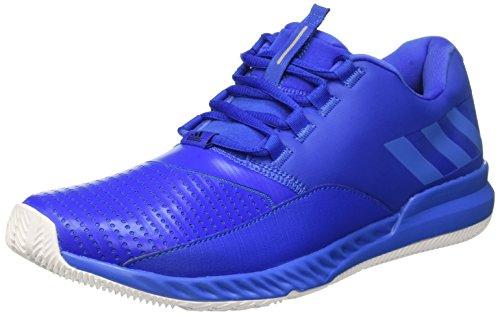 bleu Baskets M Bounce Azuray Homme Pour Crazymove Ftwbla Bleu Adidas x7wvFZqUw