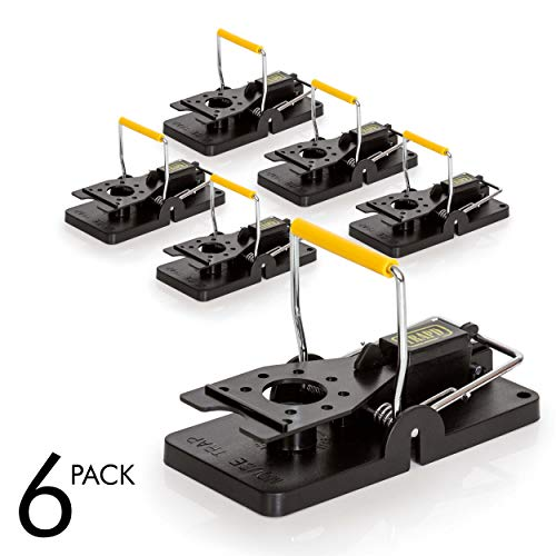 TRAPD Mouse Trap - Pack of 6 - Durable Rodent Killer - Reusable Instantly - Quick Response - Premium ABS Plastic and Stainless Steel - Best Snap Trap for Mice and Rats