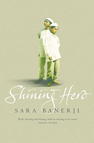 book cover of Shining Hero