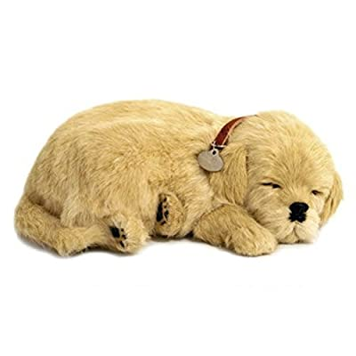 Perfect Petzzz Huggable Breathing Puppy Dog Pet Bed Golden Retriever: Toys & Games
