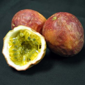 Passion Fruit Round - Melissa's Fresh Passion Fruits, 1 Dozen