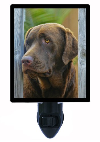 Dog Night Light - Chocolate Lab - Labrador Retriever Labrador Retriever Light