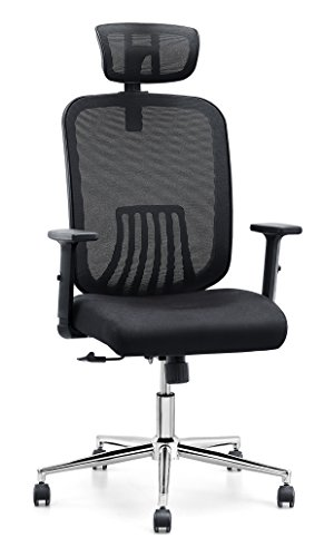 Cedric Ergonomic Mesh Office Chair, High Back Desk Chair with Adjustable PU Armrests and Mesh Headrest (CD-858FH) by Cedric furniture