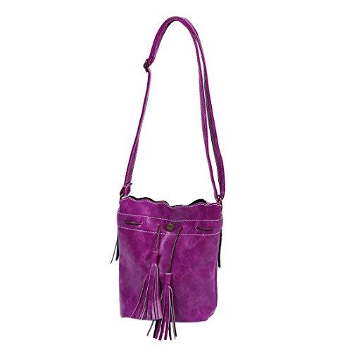 TOOGOO(R) Borsa delle donne sacchetto di spalla della borsa di modo della nappa della borsa della borsa del messaggero delle donne della rappezzatura di cuoio della borsa viola