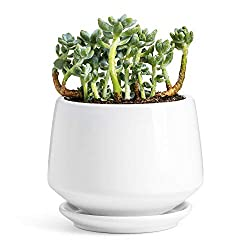 ◆◆◆A good product gives you a good mood◆◆◆ Several new planters not only are plants aesthetically pleasing in your space, but they have health benefits, such as reducing carbon dioxide levels in your home and making people feel happier and more rela...