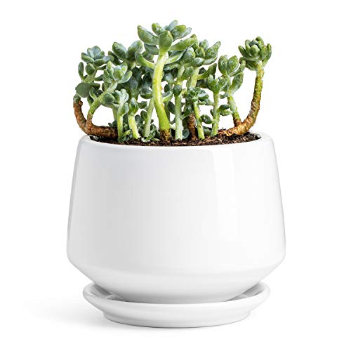 Potey Ceramic Plant Pot Flower Planters - 5.9